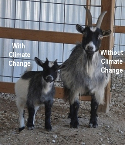 climate_goats1