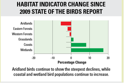 About Those Claims Of Declining Bird Populations Due To
