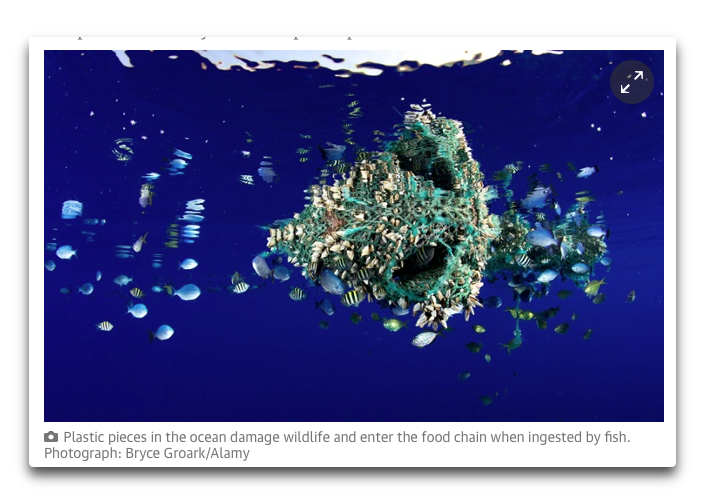 guardian plastic in ocean