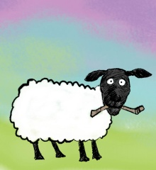 Sheep_only