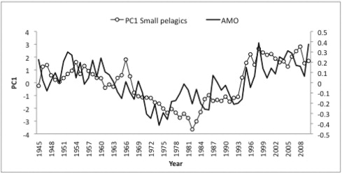 Fig. 7.  First principal component (PC1) based on the main long-term data sets of small pelagics available in the Eastern Atlantic and Mediterranean between 1945 and 2010. The Atlantic Multidecadal Oscillation (AMO) is superimposed.