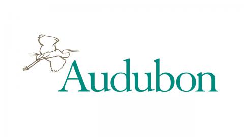 Resultado de imagen para audubon society logo png