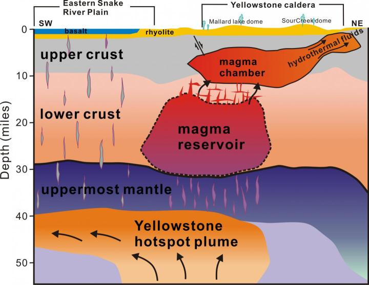 A new University of Utah study in the journal Science provides the first complete view of the plumbing system that supplies hot and partly molten rock from the Yellowstone hotspot to the Yellowstone supervolcano. The study revealed a gigantic magma reservoir beneath the previously known magma chamber. This cross-section illustration cutting southwest-northeast under Yelowstone depicts the view revealed by seismic imaging. Seismologists say new techniques have provided a better view of Yellowstone's plumbing system, and that it hasn't grown larger or closer to erupting. They estimate the annual chance of a Yellowstone supervolcano eruption is 1 in 700,000. Credit Hsin-Hua Huang, University of Utah