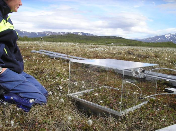 Methane Monitor