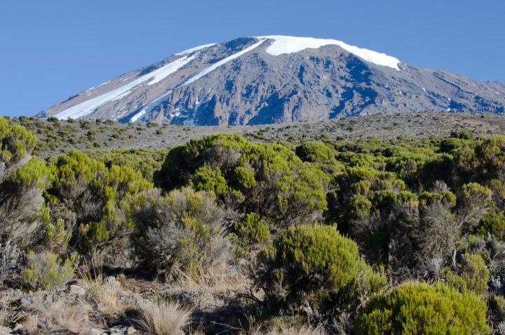 """Elevation-dependent warming is a poorly observed phenomenon that requires urgent attention to ensure that potentially important changes in high mountain environments are adequately monitored by the global observational network,"""" say members of the Mountain Research Initiative Working Group. Credit Douglas Hardy, UMass Amherst"""