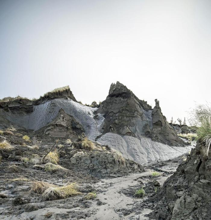 A bank of permafrost thaws near the Kolyma River in Siberia. Credit Skidaway Institute of Oceanography