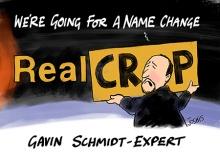 Real_Crop_scr