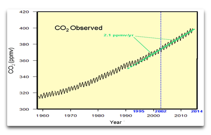 Salby CO2 observed