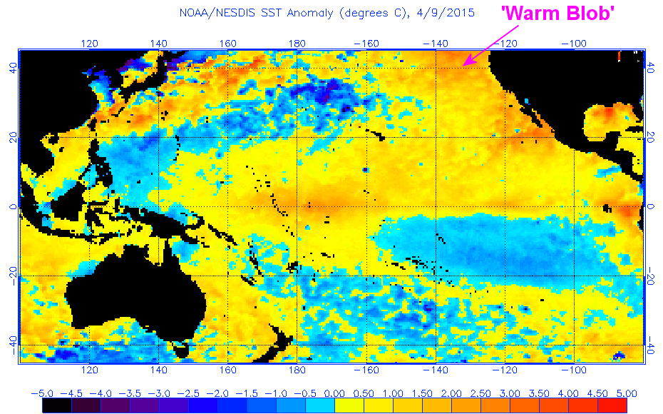 Warm blob in Pacific Ocean not caused by climate change affects
