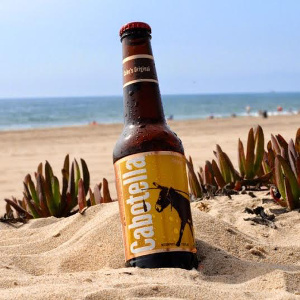 Cabotella beach beer, author Jordan Gardenhire, source Wikimedia