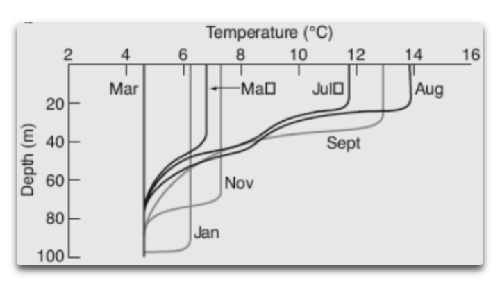 monthly mixed layer depth