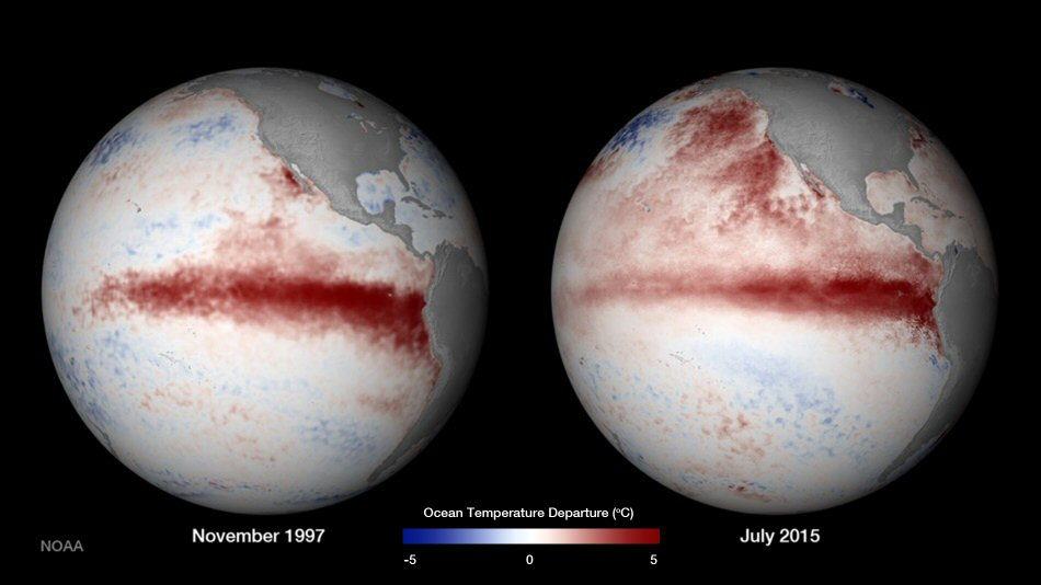 This is a comparison of the 2015 and 1997 El Niños, two of the strongest on record, in October of each respective year. Observations of sea surface heights and temperatures, as well as wind patterns, show surface waters cooling off in the Western Pacific and warming significantly in the tropical Eastern Pacific. CREDIT NASA's Earth Observatory.