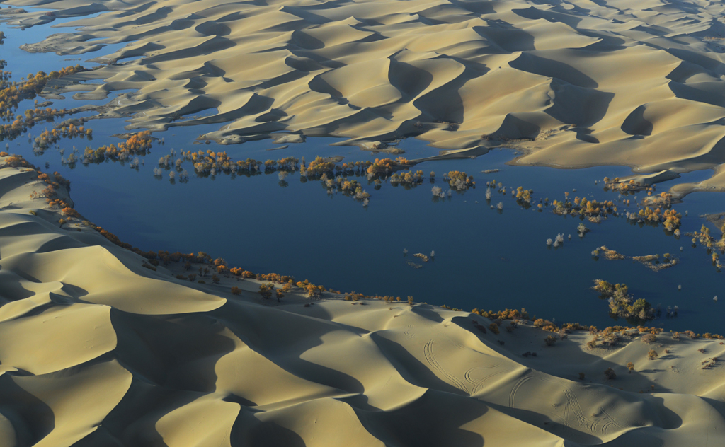 Scientists followed the journey of water through the Tarim Basin from the rivers at the edge of the valley to the desert aquifers under the basin. They found that as water moved through irrigated fields, the water gathered dissolved carbon and moved it deep underground. Credit: Yan Li
