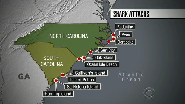 That Didnt Take Long North South Carolina Shark Attacks Blamed On Global Warming