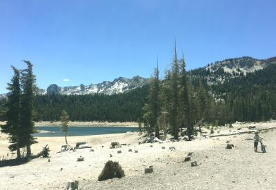 CAPTION This image shows an abnormally low lake level at Horseshoe Lake in the high-elevation Mammoth Lakes Basin, Sierra Nevada Mountains, This photo was taken June 2015. CREDIT Jennifer Bernstein