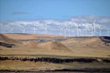 Shepherds_Flat_Wind_Farm_2011[1]