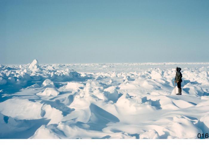 Arctic ice, in 1957, is shown. CREDIT Norbert Untersteiner