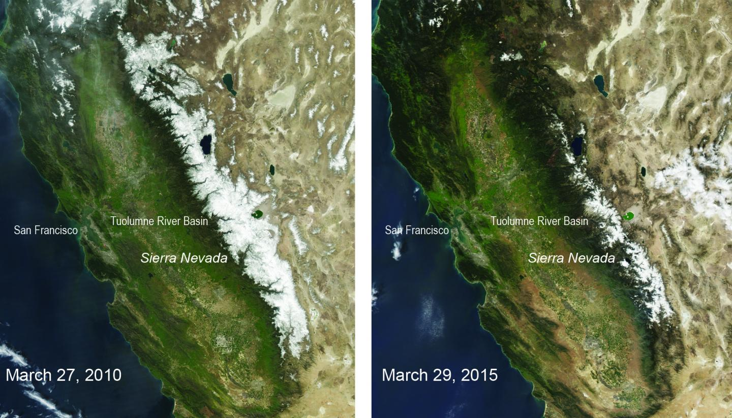 These two natural-color satellite images of the snow cover in the Sierra Nevada in California and Nevada show the last year with average winter snowfall, 2010, compared with 2015 -- a year that had the lowest snowpack in 500 years. The images were taken by the Moderate Resolution Imaging Spectroradiometer on NASA's Aqua satellite. CREDIT NASA/MODIS