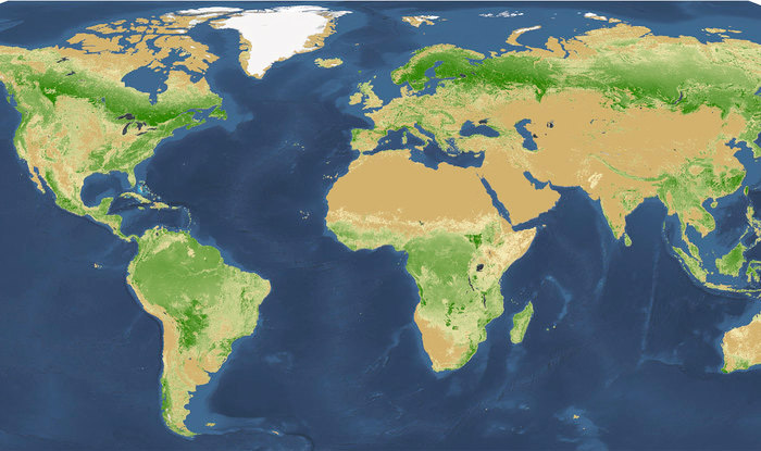 Trees-world