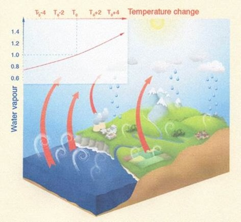 Water Vapour: The Big Wet Elephant In The Room | Watts Up