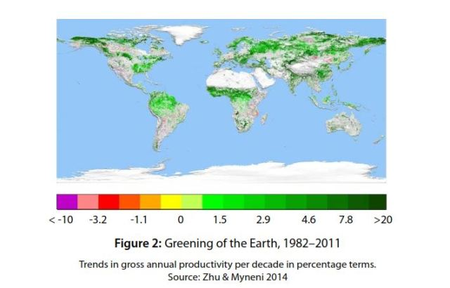 377b6aa10299 Study  increased carbon dioxide is greening deserts globally