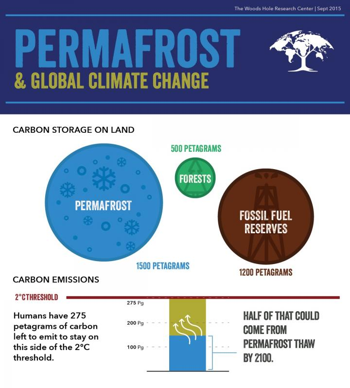Permafrost thaw and global climate change. CREDIT Woods Hole Research Center