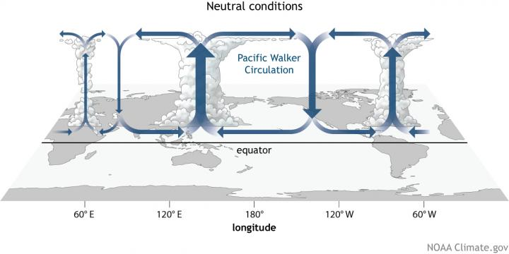 Walker Circulation is illustrated. CREDIT NOAA Climate.gov