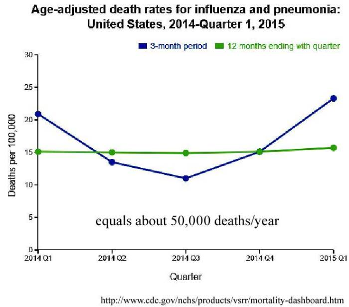 flu_deaths_anot