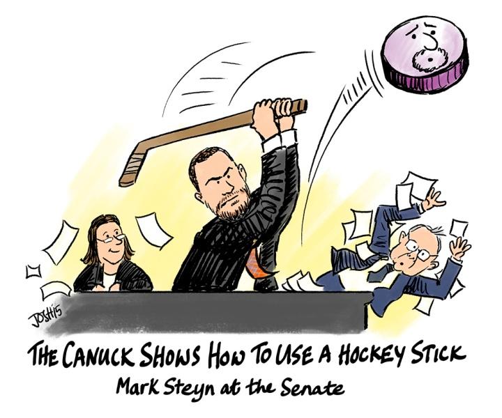 steyn-senate-stick