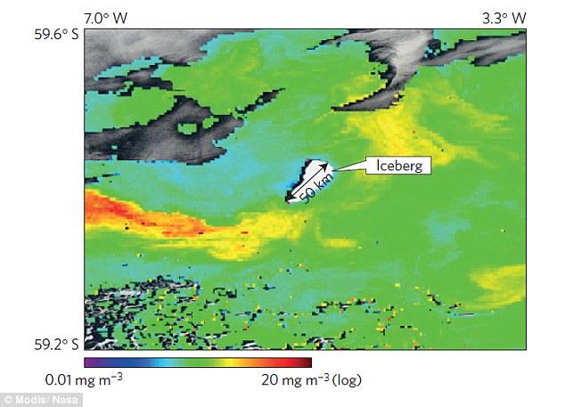 iceberg-phytoplankton-trail