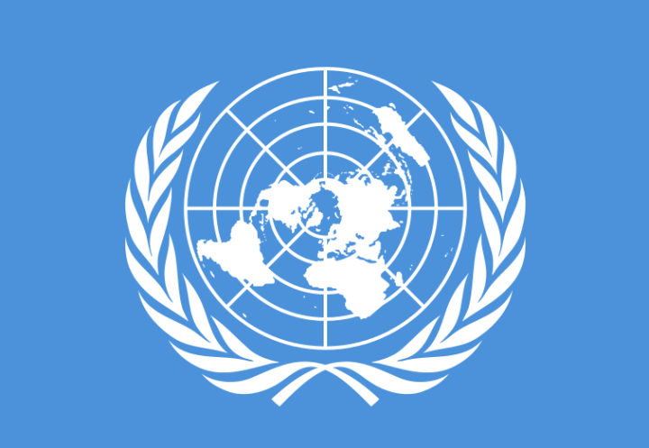 Flag of the United Nations, Public Domain Image