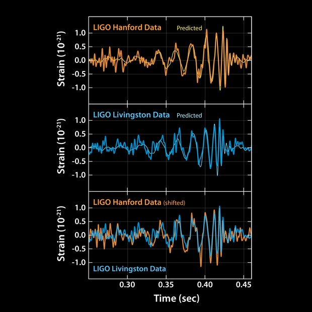Image Credit: Caltech/MIT/LIGO Lab These plots show the signals of gravitational waves detected by the twin LIGO observatories at Livingston, Louisiana, and Hanford, Washington. The signals came from two merging black holes, each about 30 times the mass of our sun, lying 1.3 billion light-years away. The top two plots show data received at Livingston and Hanford, along with the predicted shapes for the waveform. These predicted waveforms show what two merging black holes should look like according to the equations of Albert Einstein's general theory of relativity, along with the instrument's ever-present noise. Time is plotted on the X-axis and strain on the Y-axis. Strain represents the fractional amount by which distances are distorted. As the plots reveal, the LIGO data very closely match Einstein's predictions. The final plot compares data from both detectors. The Hanford data have been inverted for comparison, due to the differences in orientation of the detectors at the two sites. The data were also shifted to correct for the travel time of the gravitational-wave signals between Livingston and Hanford (the signal first reached Livingston, and then, traveling at the speed of light, reached Hanford seven thousandths of a second later). As the plot demonstrates, both detectors witnessed the same event, confirming the detection.