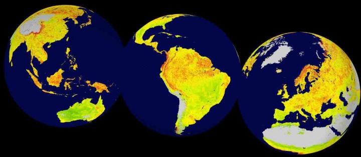 Global map of the Vegetation Sensitivity Index (VSI), a new indicator of vegetation sensitivity to climate variability using satellite data. Red colour shows higher ecosystem sensitivity, whereas green indicates lower ecosystem sensitivity. Grey areas are barren land or ice covered. Inland water bodies are mapped in blue. CREDIT: LEFT