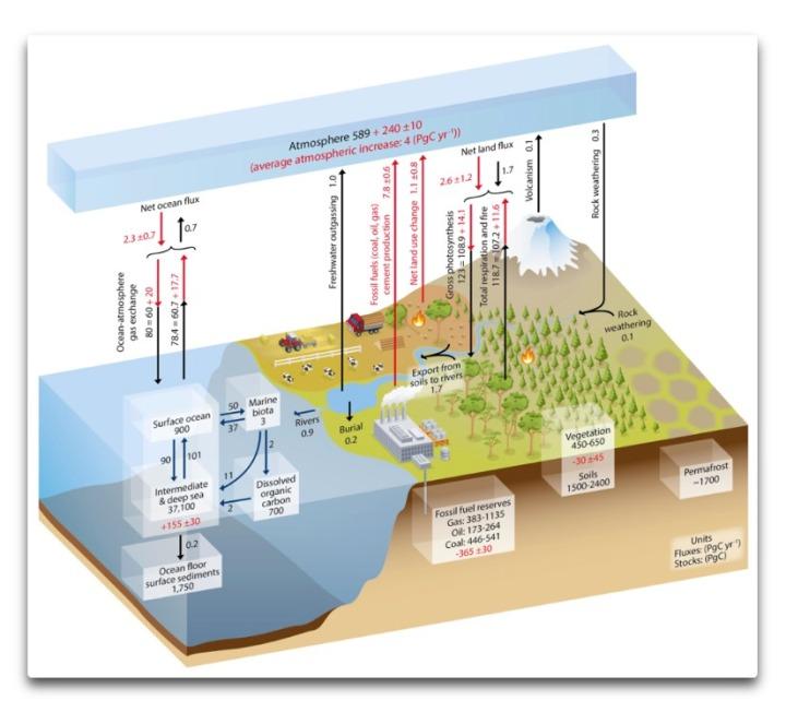 carbon cycle ipcc ar5 fig 6.1