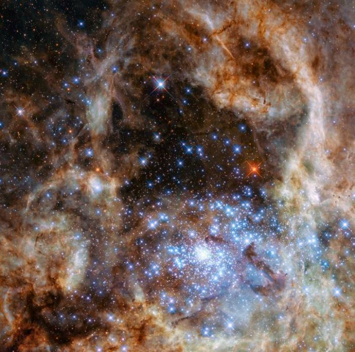 The image shows the central region of the Tarantula Nebula in the Large Magellanic Cloud. The young and dense star cluster R136 can be seen at the lower right of the image. This cluster contains hundreds of young blue stars, among them the most massive star detected in the Universe so far. Using the NASA/ESA Hubble Space Telescope astronomers were able to study the central and most dense region of this cluster in detail. Here they found nine stars with more than 100 solar masses. CREDIT NASA, ESA, P Crowther (University of Sheffield)