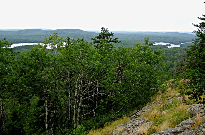 View from near the top of Eagle Mountain, the highest point in Minnesota. Visible are the surrounding Misquah Hills and the North Branch of the Cascade River. Eagle Lake can be seen at the right of the photo, and Shrike Lake at the left. Photo taken by Douglas Kaye in 2006, from the last clear view near the end of the trail to the peak. Public domain image, source Wikimedia