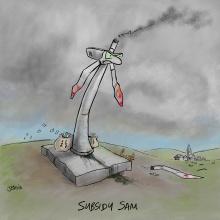 Subsidy-sam_scr
