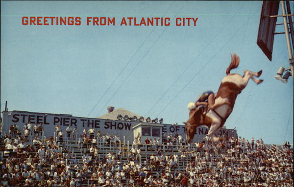 Postcard of Diving Horse at Steel Pier Atlantic City