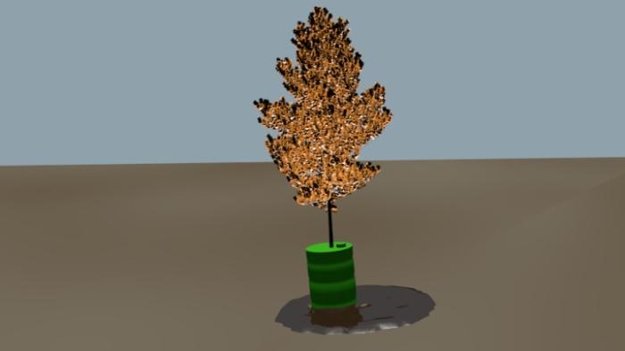 Biofuel Tree