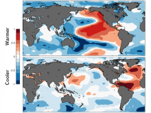 estimated-pattern-multidecadal-internal-variability-sea-surface-temps-800x600