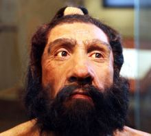 Reconstruction of the head of the Shanidar 1 fossil, a Neanderthal male who lived c. 70,000 years ago (John Gurche 2010)