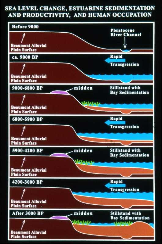 prehistory-estuary-evolution-rr