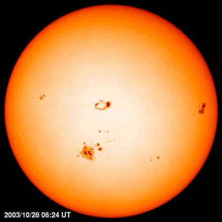 On our star, the Sun, the sunspots are seen in a belt around the equator. Sunspots are cool areas caused by the strong magnetic fields where the flow of heat is slowed. Credit: NASA