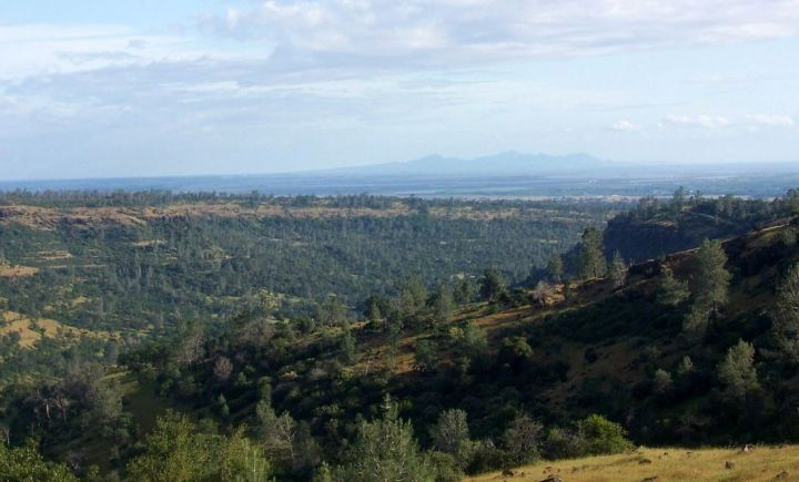 Butte County in 2005, with a view of the Sutter Buttes in the background Image: Wikipedia