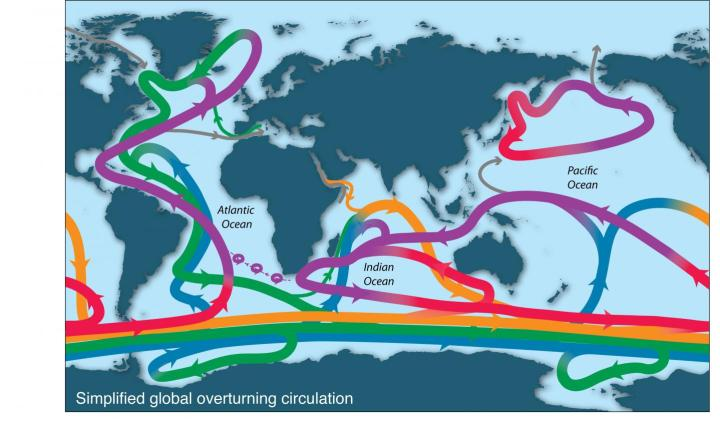 Ocean waters circulate globally, rising in some regions and sinking in others.CREDIT L.D. Talley et al,, Oceanography, 2013