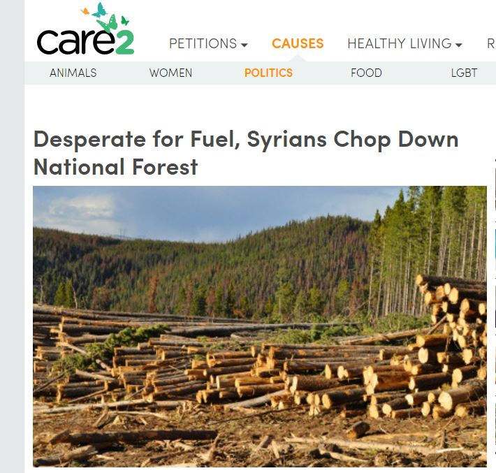 syria-deforestation