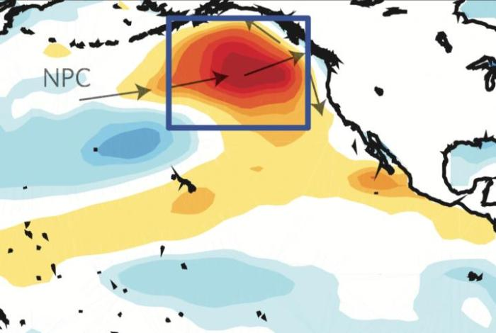 This is a map showing the development of the marine heatwave. CREDIT Georgia Institute of Technology