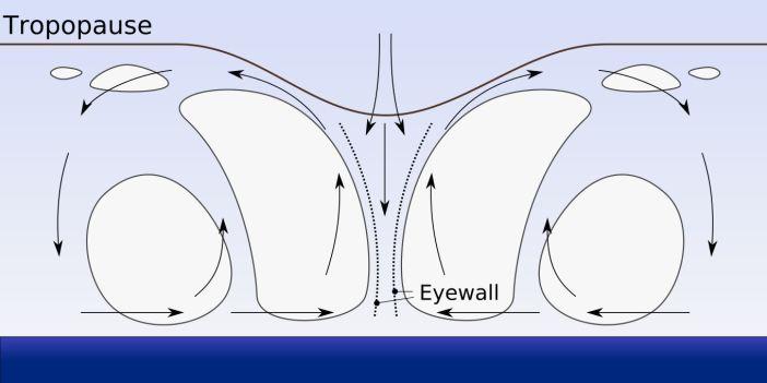 eyewall-cycle