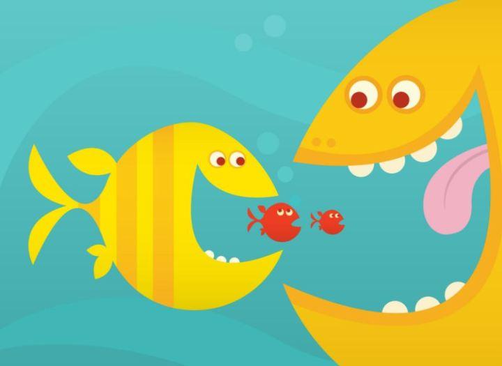 fish-predator-fish