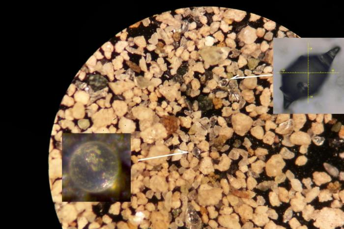 Microtektites as first seen in a sediment sample from the onset of the Paeocene-Eocene Thermal Maximum. CREDIT Rensselaer Polytechnic Institute